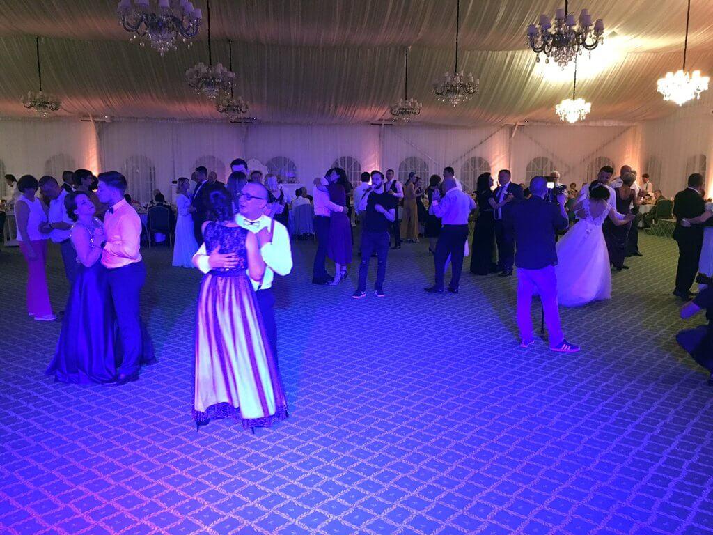 Formatia VEXUS la nunta in Baia Sprie - Formatie nunta Baia Mare